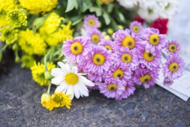 震災がきっかけで自然葬をお願いすることにしました (福岡県在住 70代男性 無職)